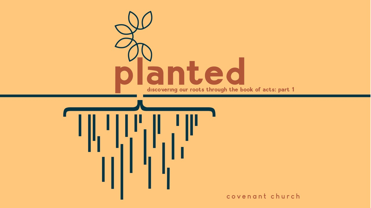 Planted: Discovering Our Roots through the Book of Acts